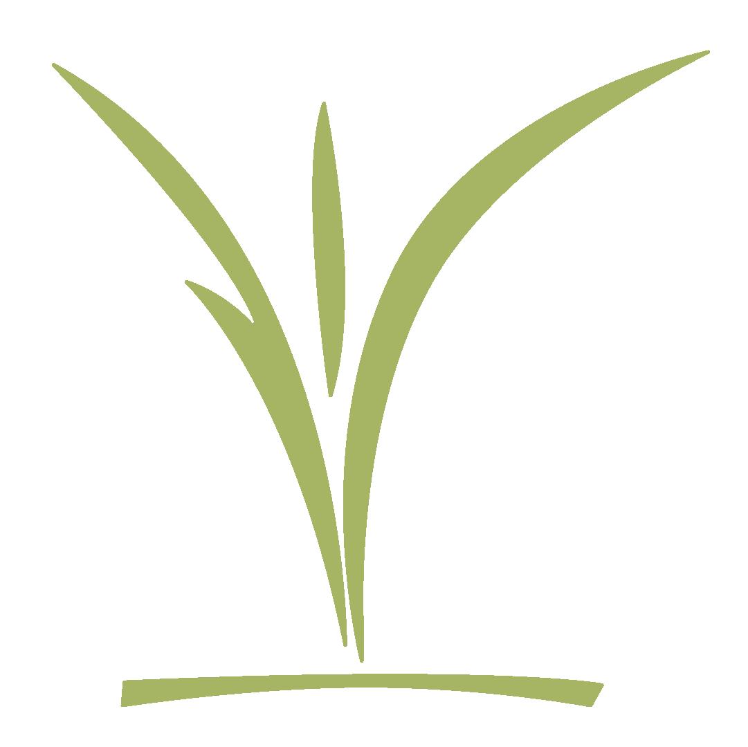 CCC_childrens_logo_green.png