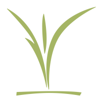CCC_childrens_logo_green-small.png
