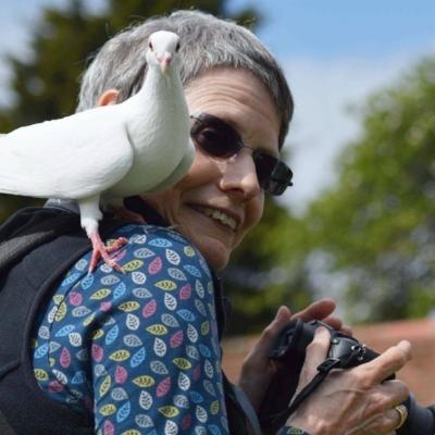 Ann Lewis. Photo by Jane Howard.