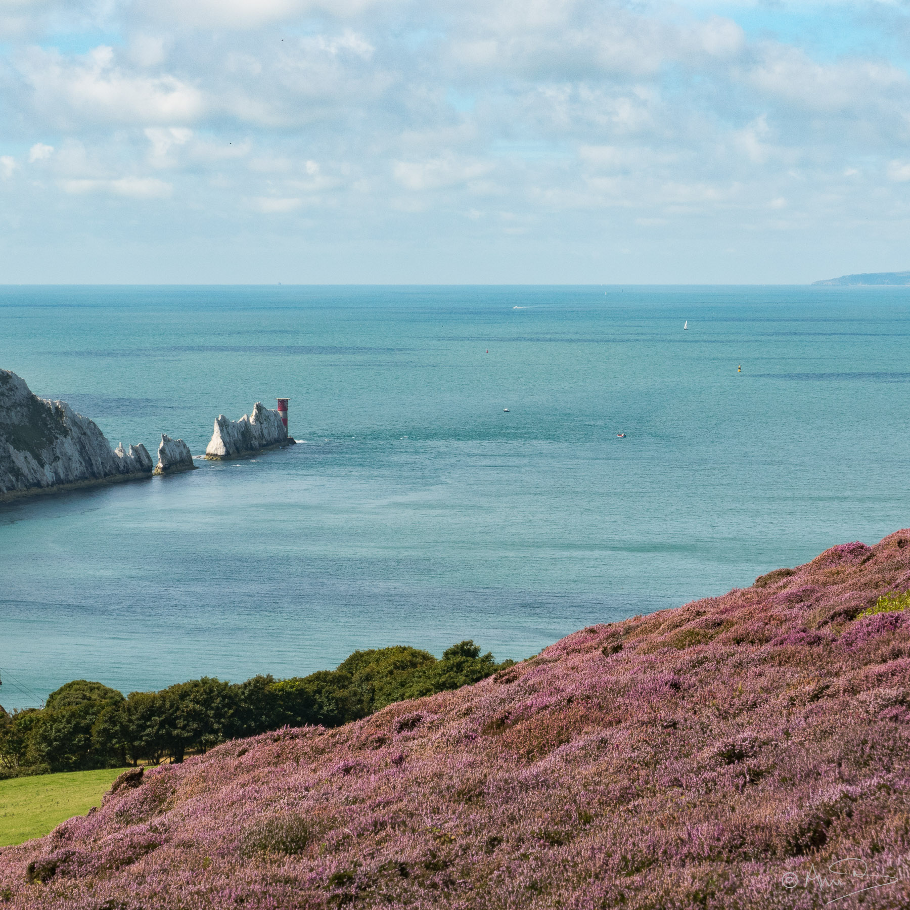 Headon Warren-Needles.