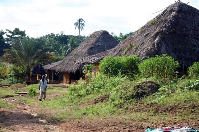Futa Village