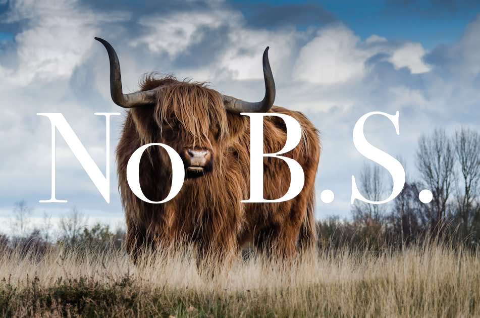 bull-landscape-nature-mammal-139399 compressed_Fotor.jpg