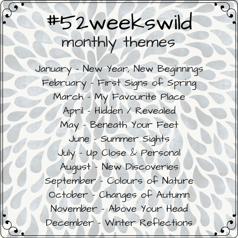 52weekswild nature challenge themes