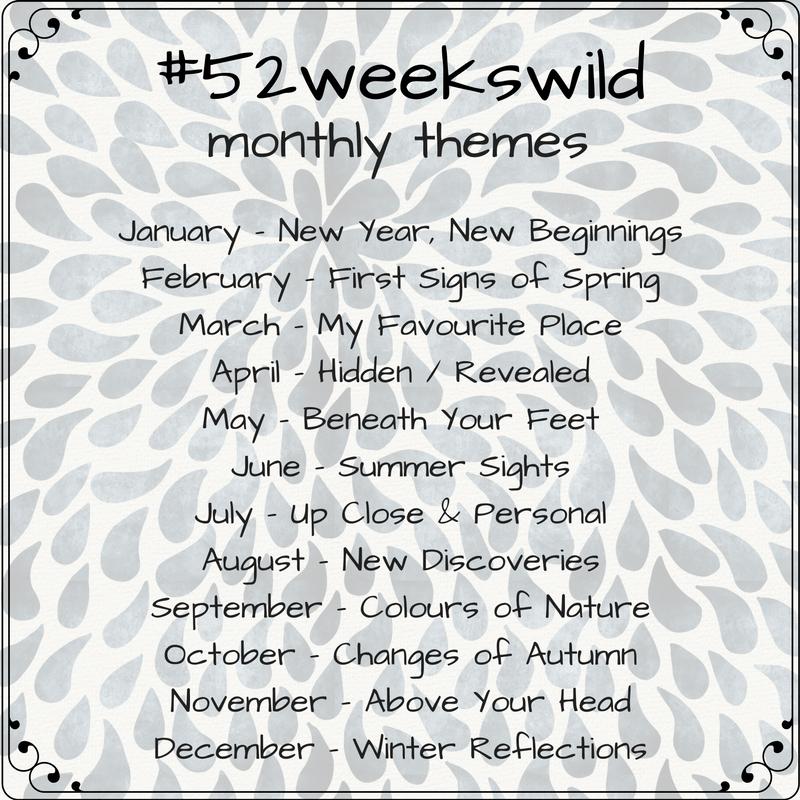 52weekswild nature challenge themes