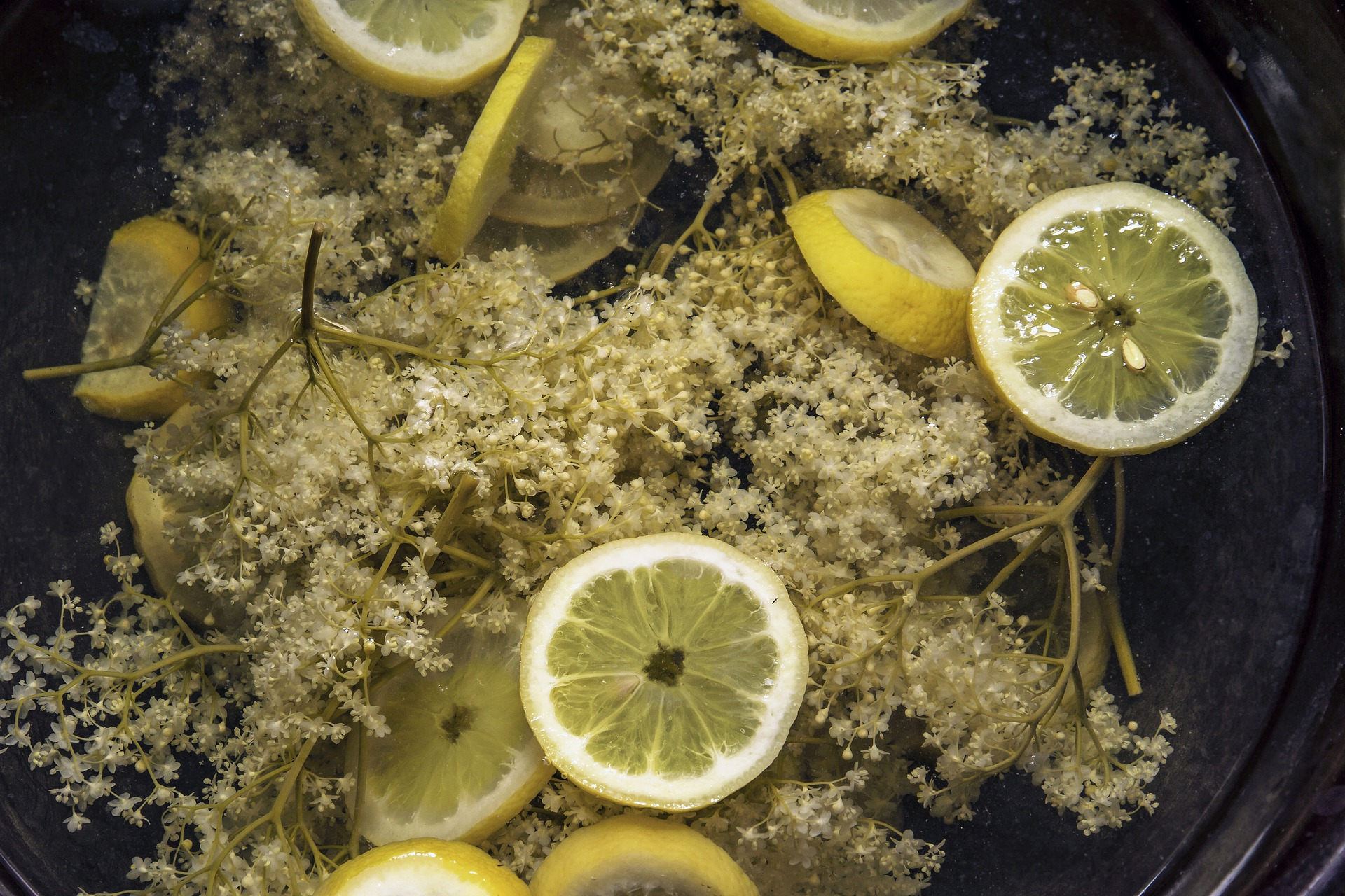 Elderflower cordial Catherine Mason