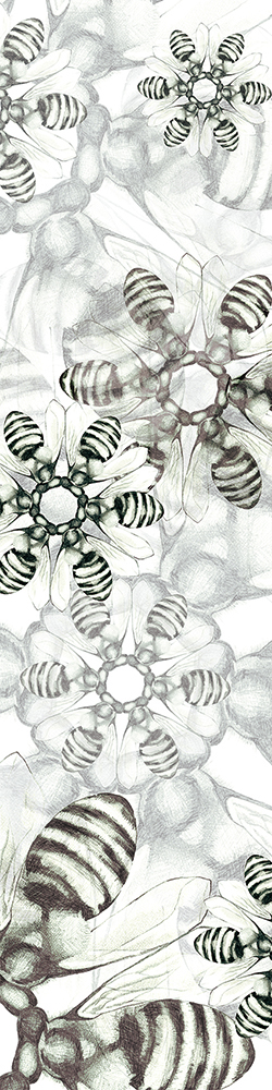 Taste This Minute (floral super frame)  Digitally manipulated graphite drawing  2009