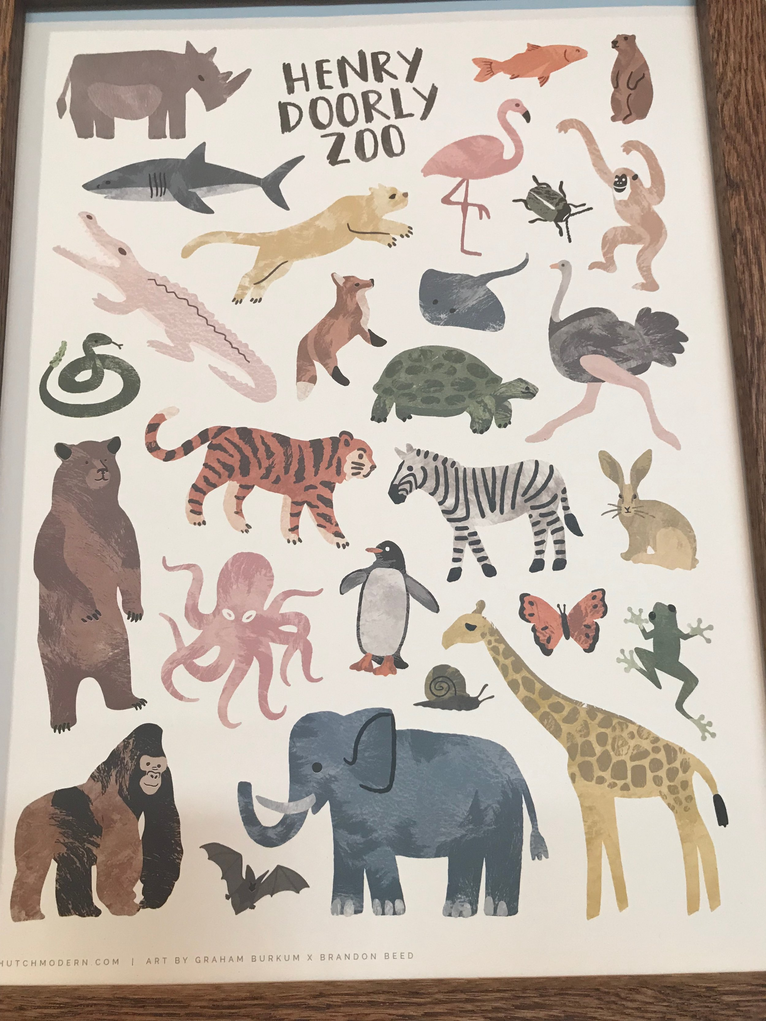 Hutch Zoo print.jpg