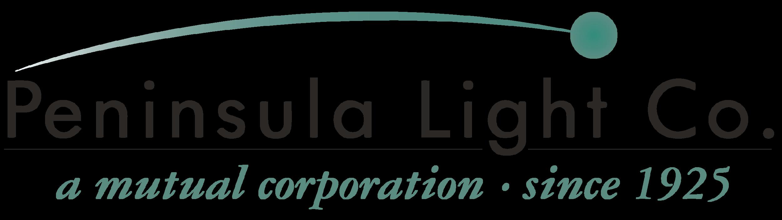 pen light logo.png