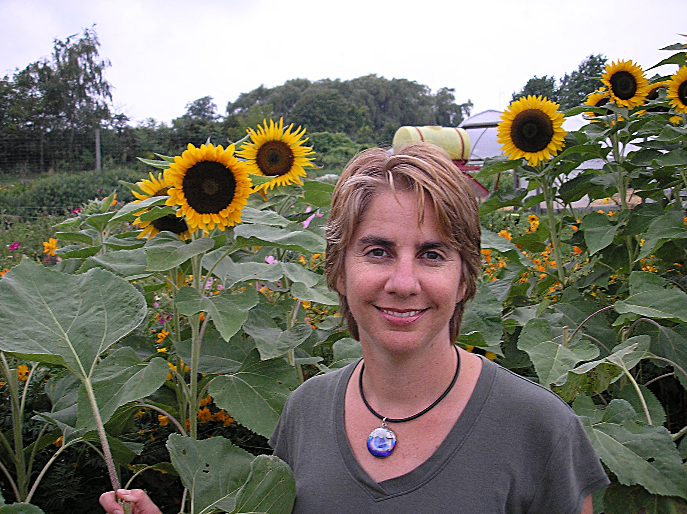 Jen in Sunflowers.JPG