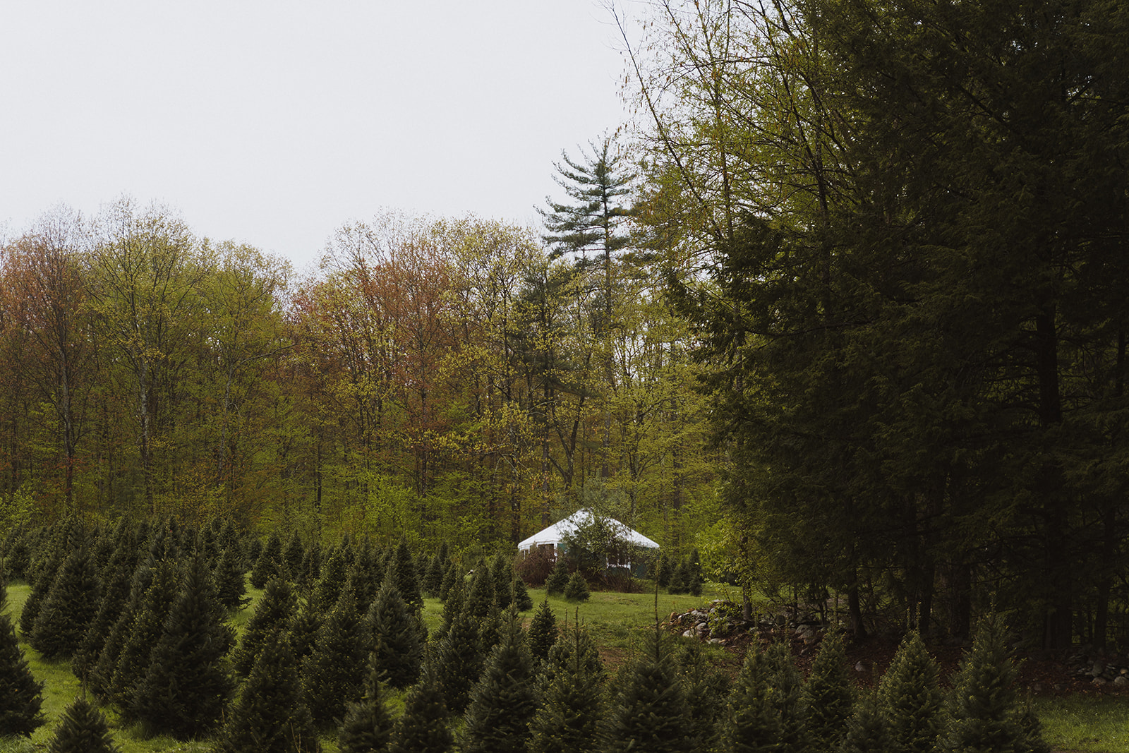 Tuckaway Tree Farm Lebanon Maine Wedding Inspiration