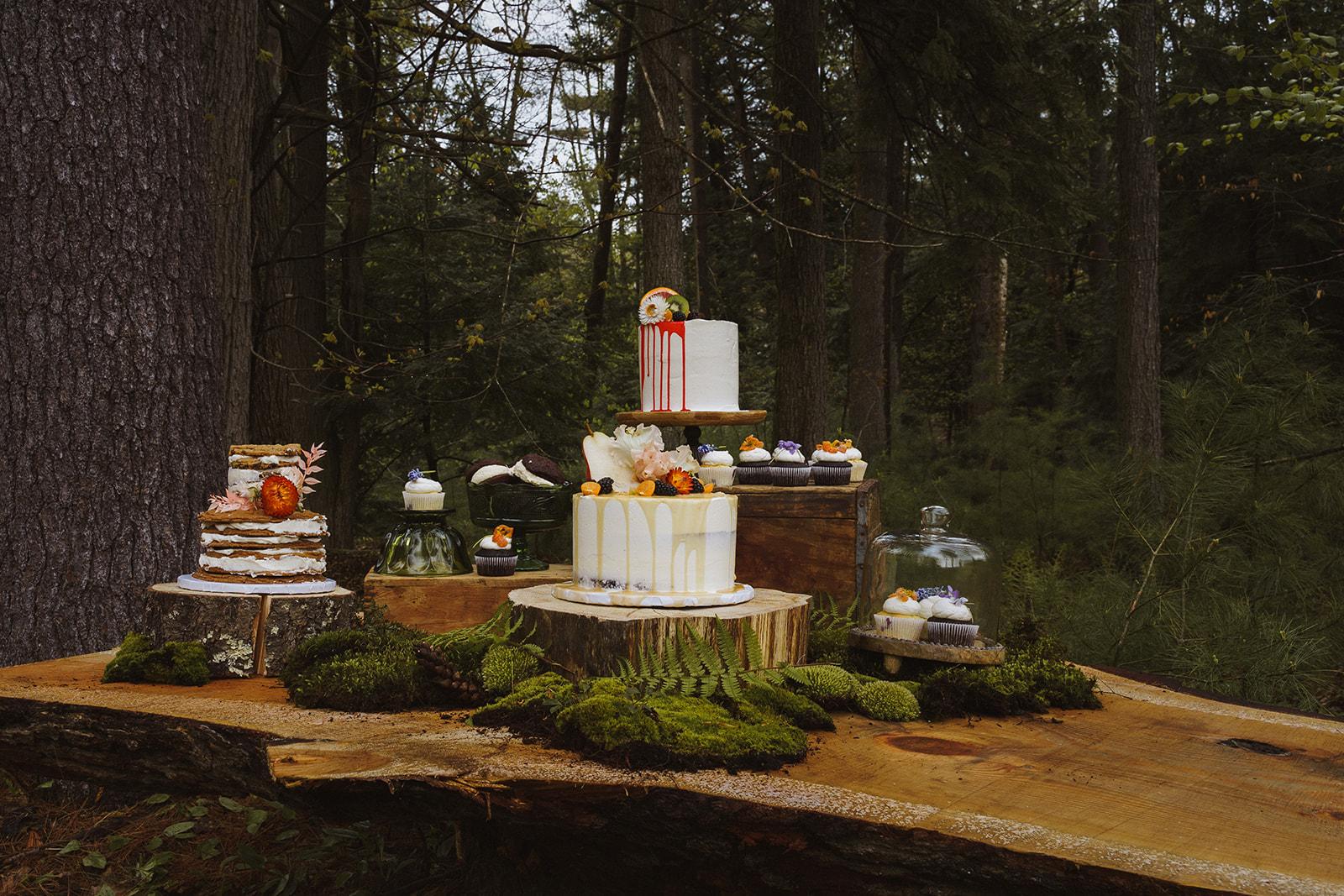 Tuckaway Tree Farm Lebanon Maine Wedding Inspiration 51