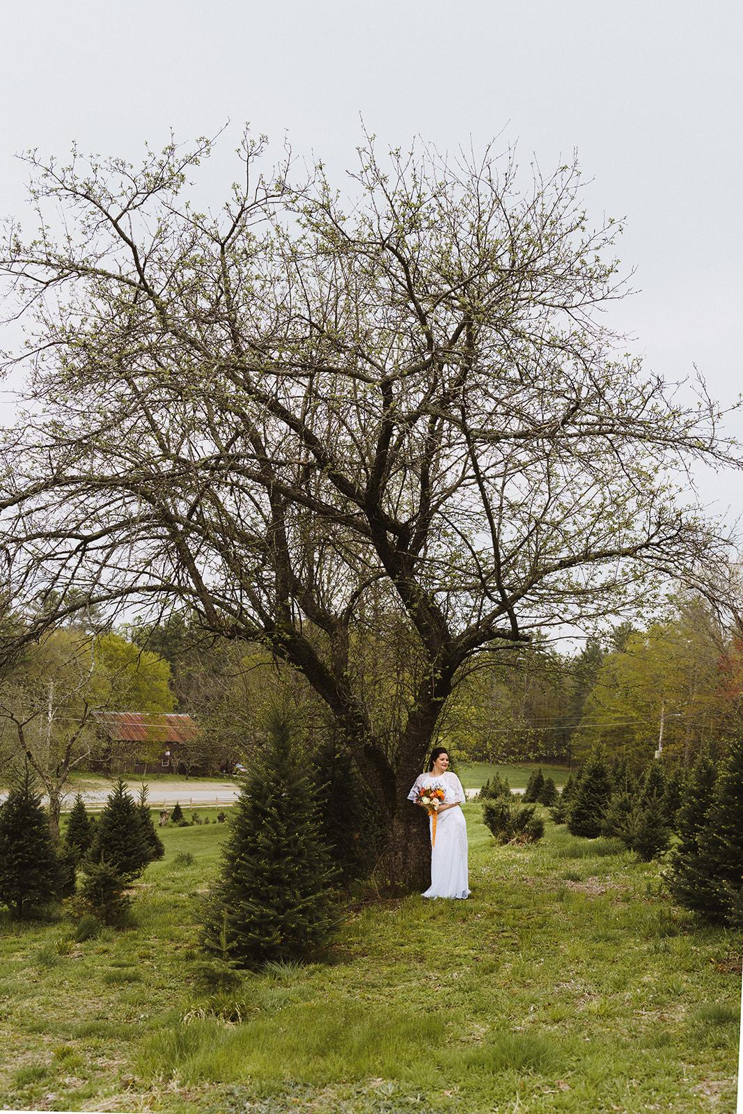 Tuckaway Tree Farm Lebanon Maine Wedding Inspiration 79
