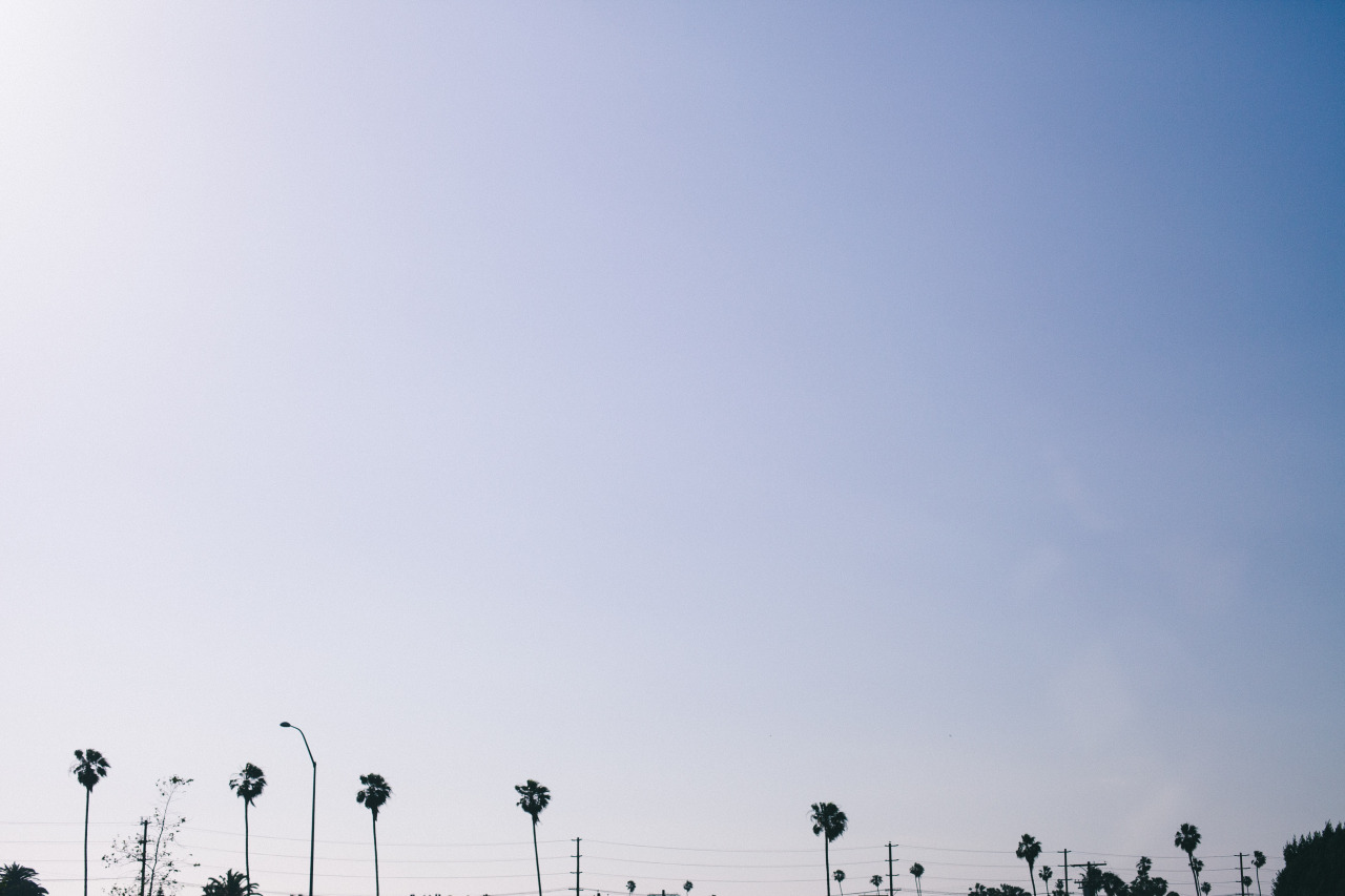 Took a quick trip to LA last weekend and only took my camera out for the cab ride to my Airbnb.