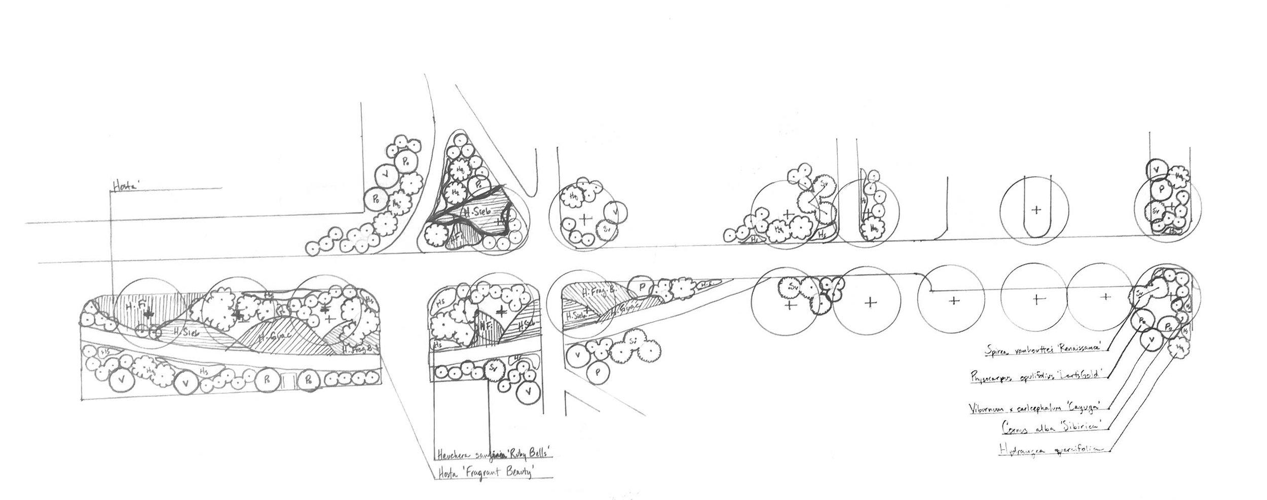 SUNY Cortland hand sketch B+W-cleaned.jpg