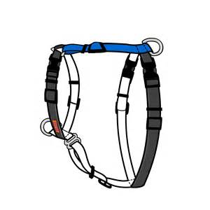 no-pull dog harness - Balance Harness