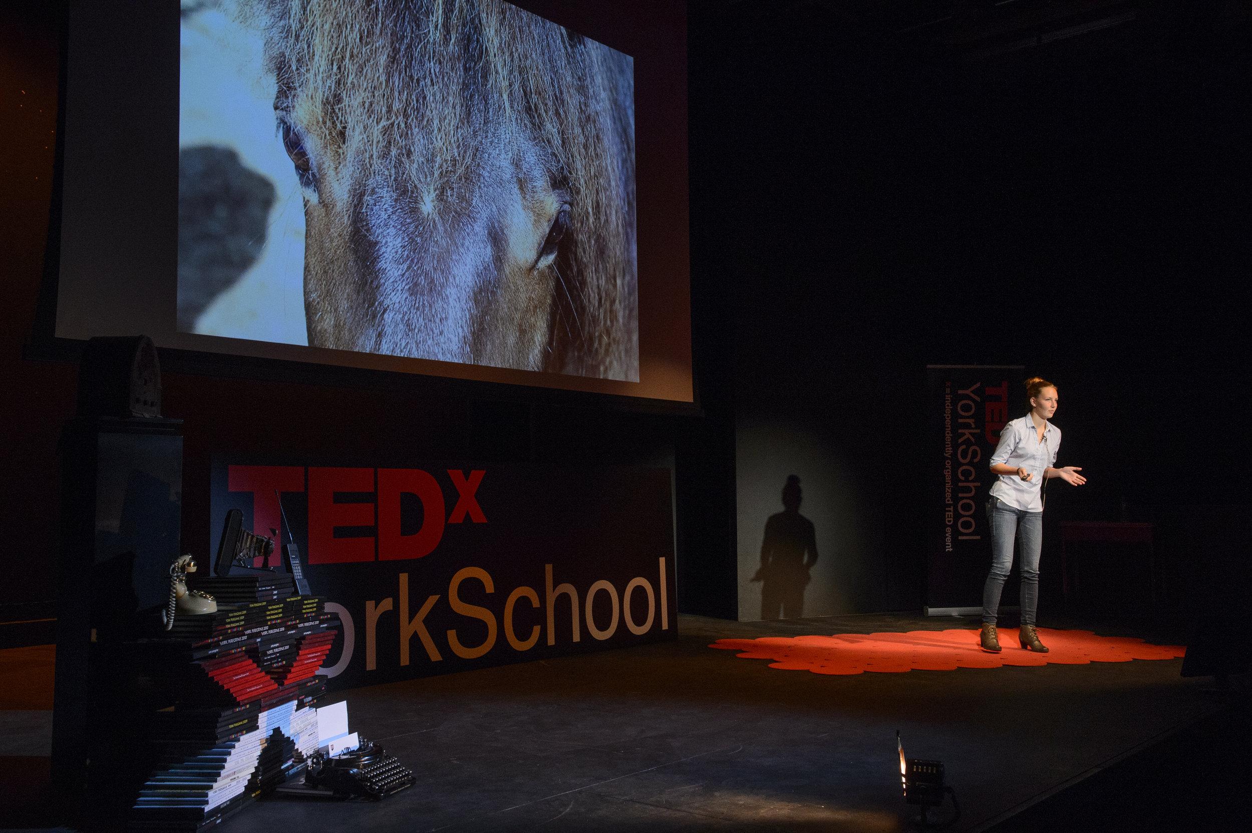 TEDxYorkSchool2015-053.jpg