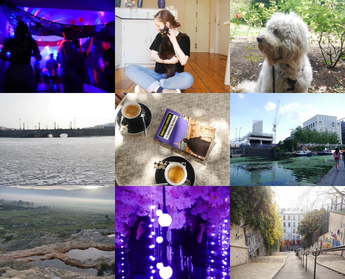 Left to right, top to bottom: my best friend's birthday, Patti, the beautiful dog I live with, walking across a frozen lake in Copenhagen, Paris in August, one of my favourite spots in London, at the top of a waterfall outside Cape Town, an art installation in London, and Paris in December.