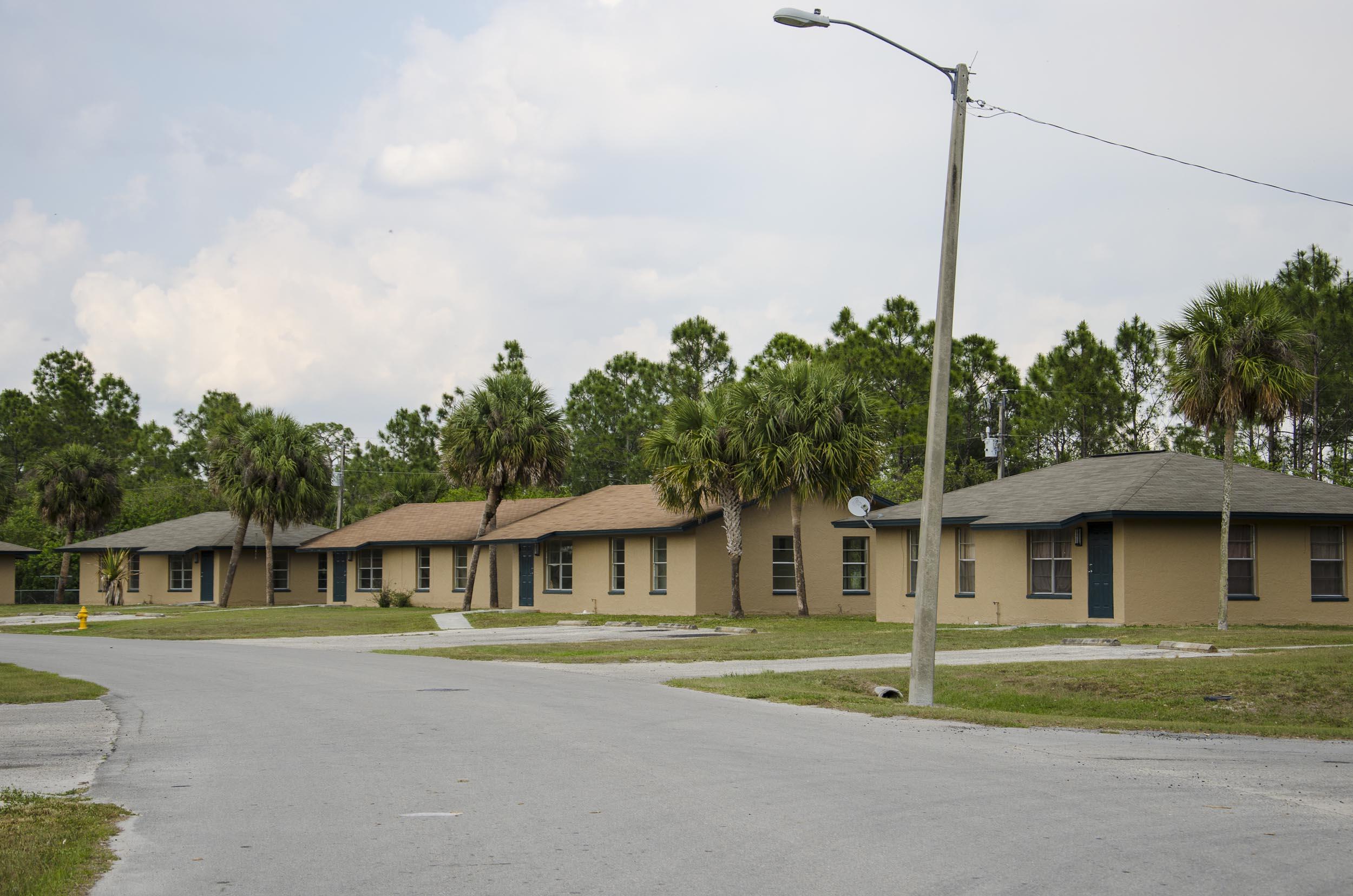 2011.03_FLORIDA_1467.jpg