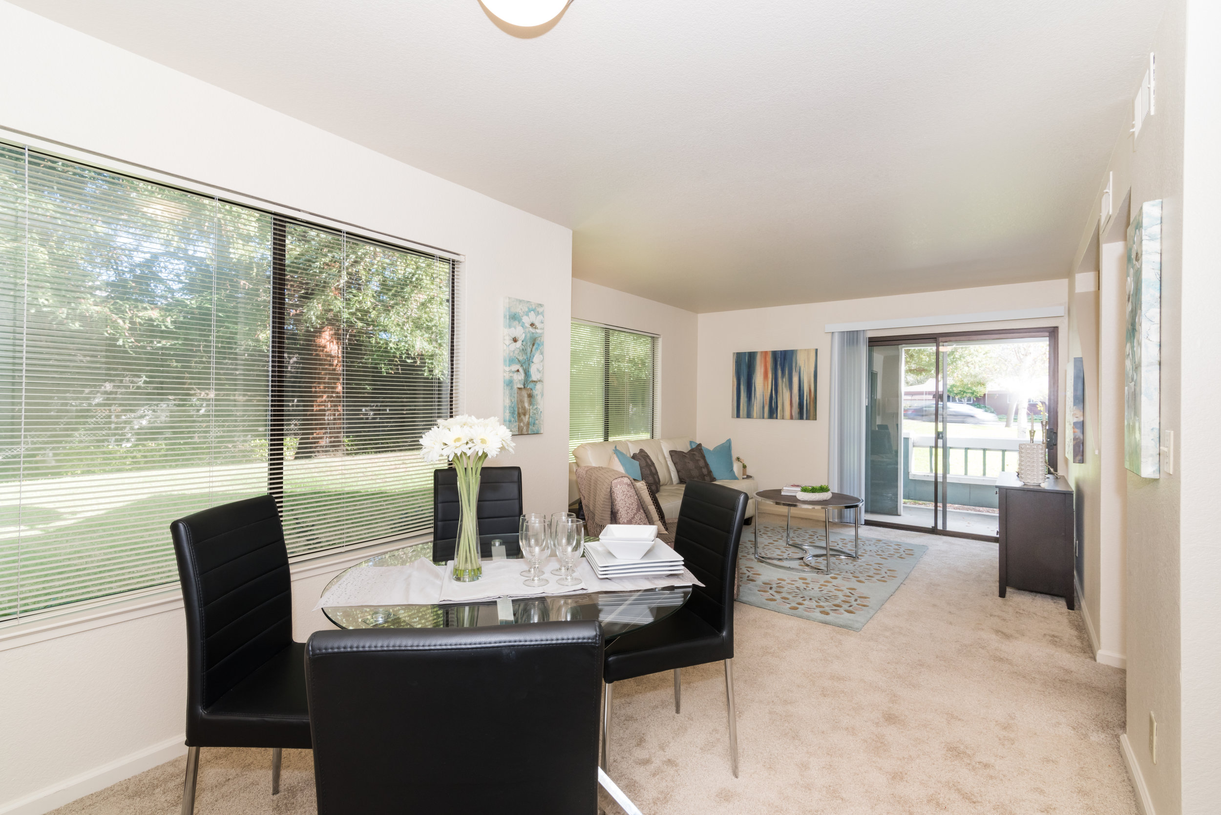Apartment Dining Room and Family Room