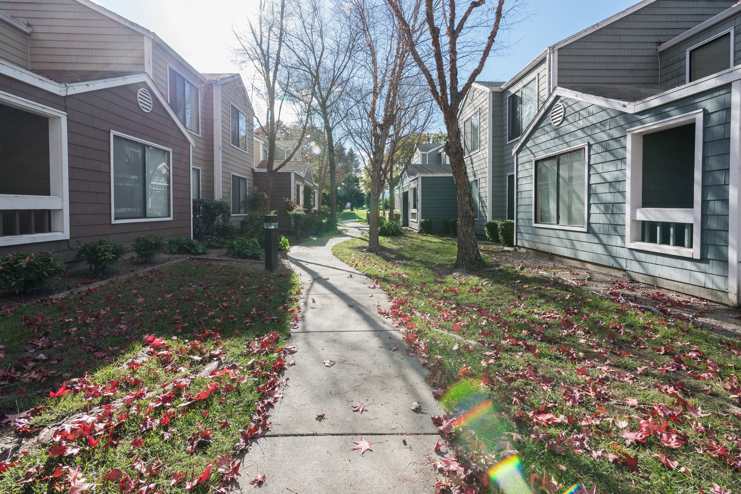 Safe and Walkable Apartment Community