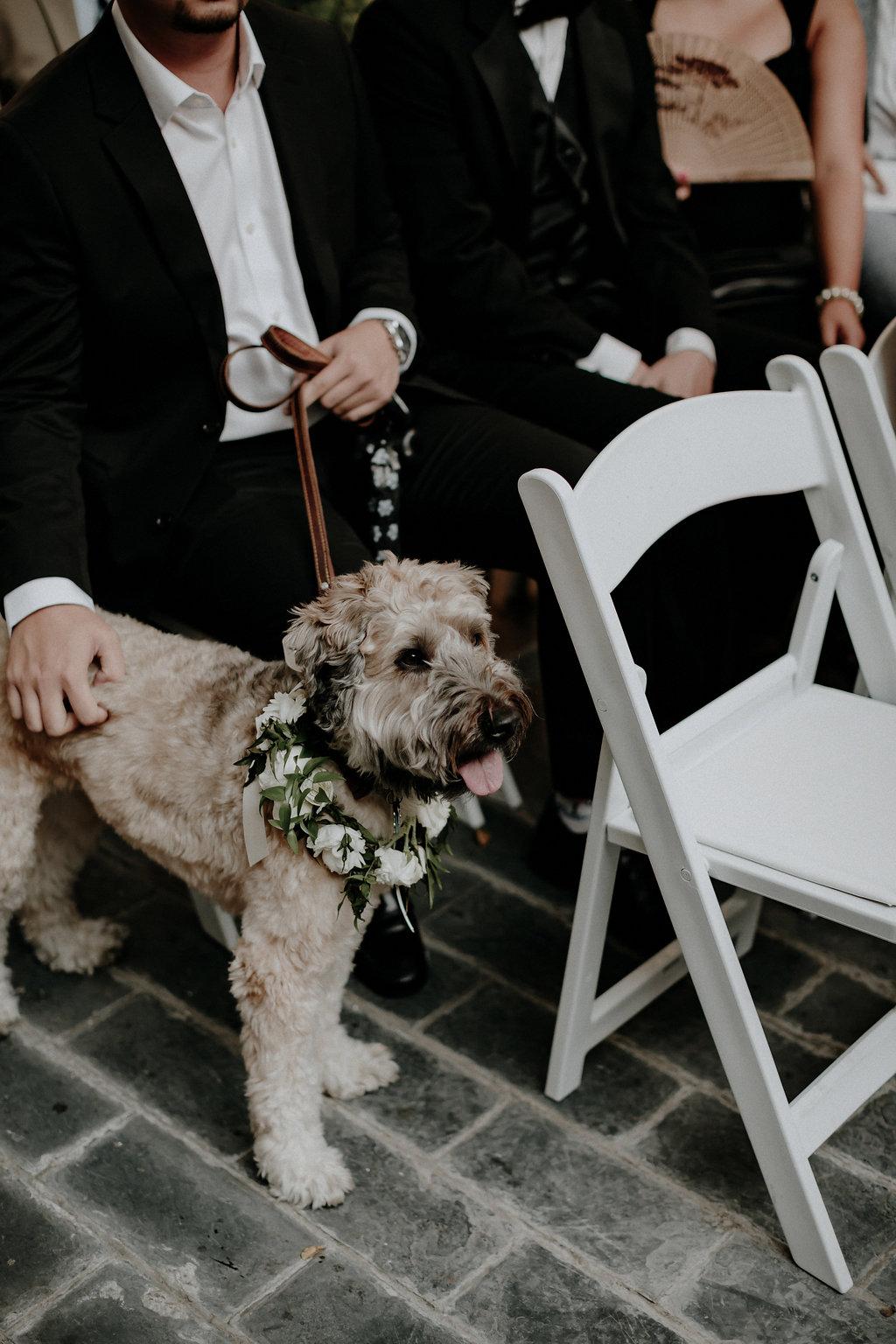 KRIS+JANINE-WEDDING0217.jpg
