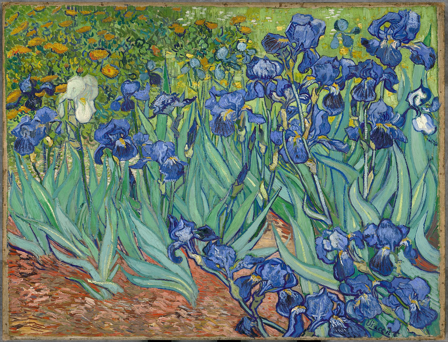 Vincent Van Gogh. 1889.  Irises.  Oil on canvas.