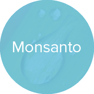 monsanto-light.jpg