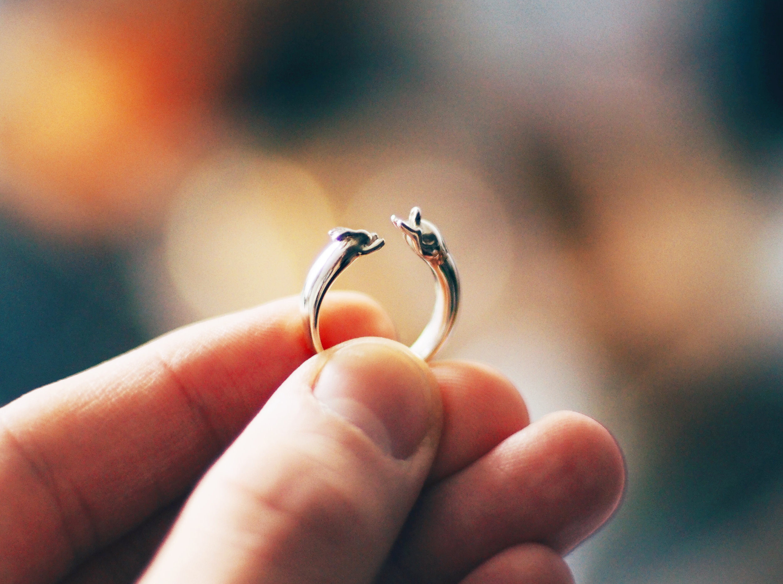 The ring is composed of two perfect circles — the interior and the rabbit's spine.