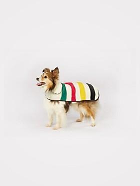 Small or Medium National Park Pendelton dog coat, $49, Large coat, $59