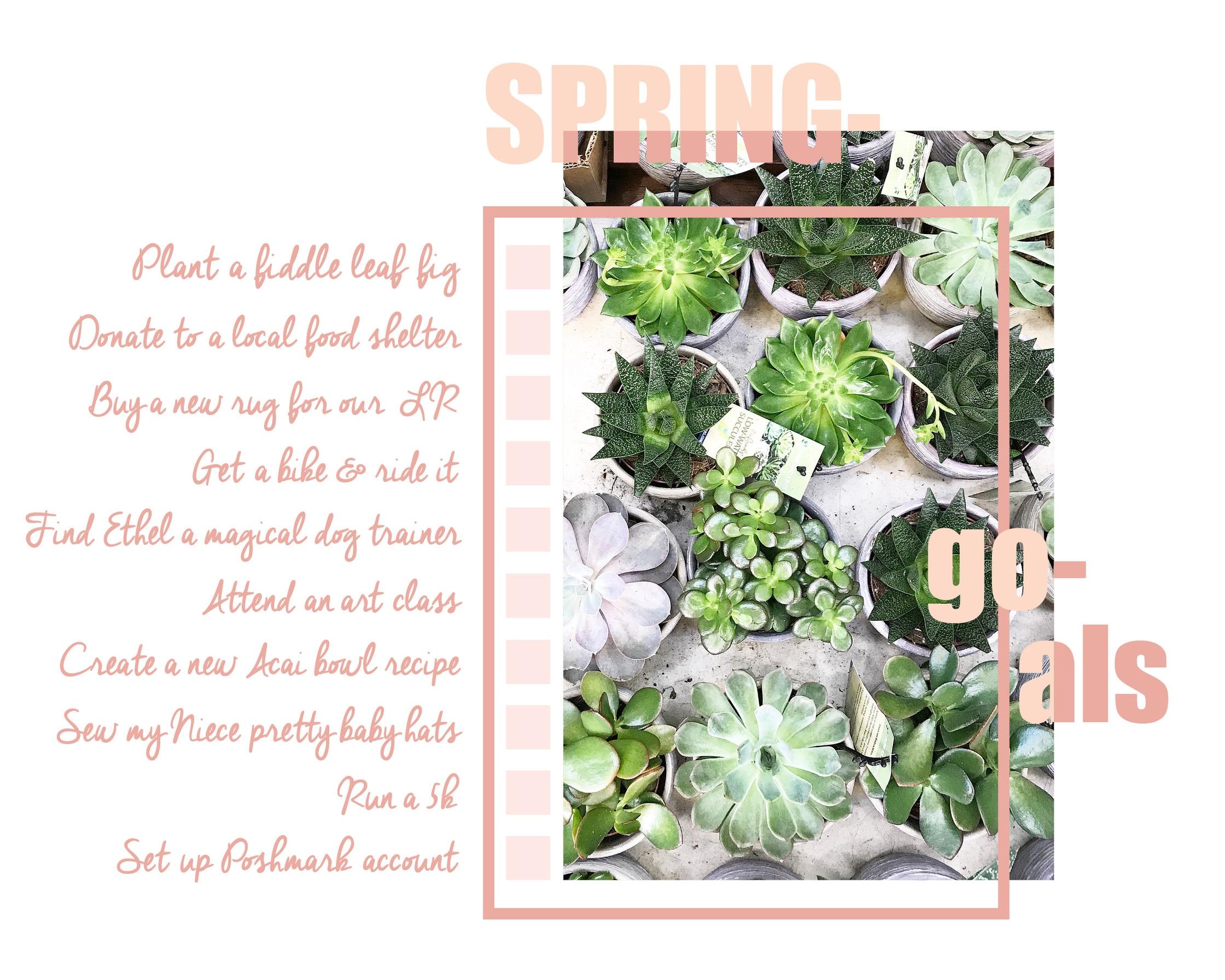 Spring Goals_2018.jpg