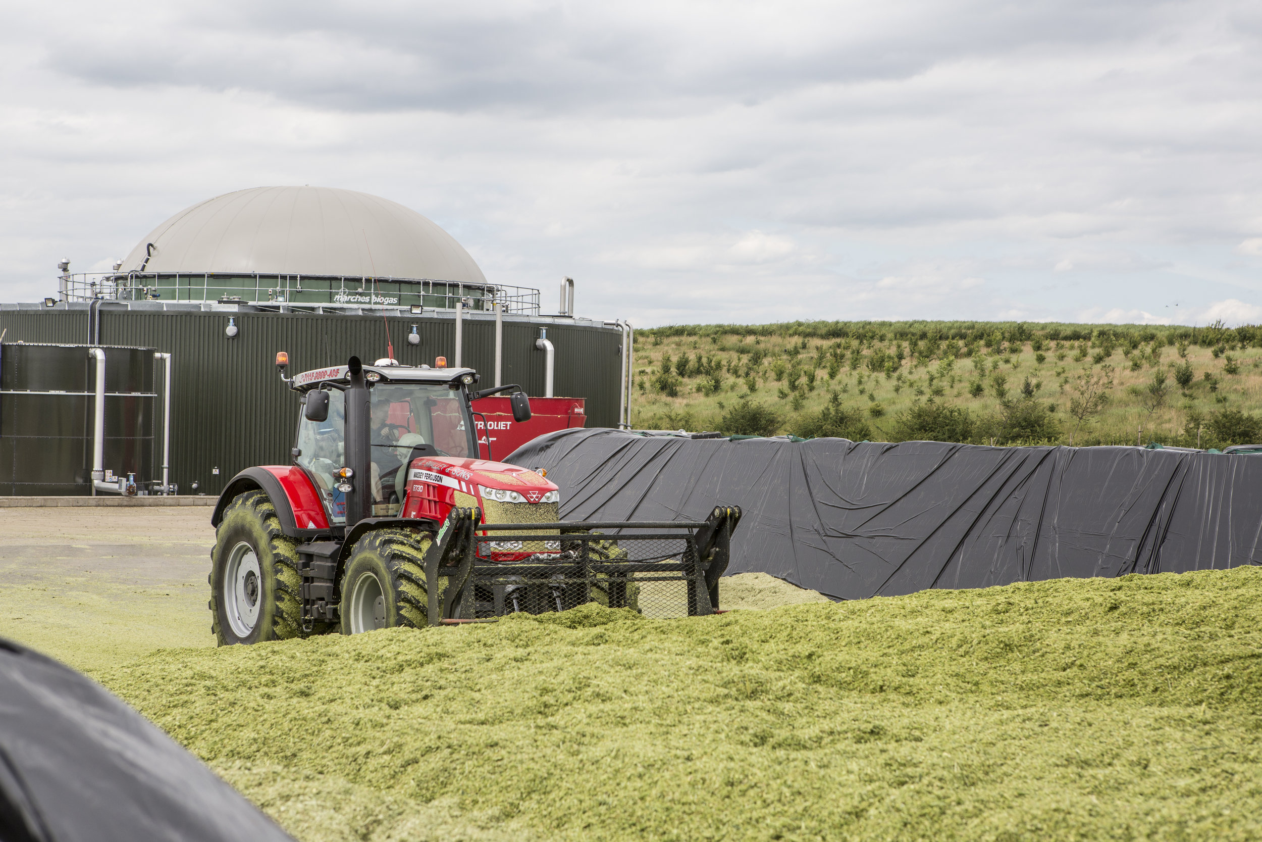 New research – Grass SIlage Trial