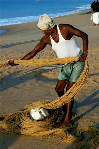 tn_480_india4.jpg.jpg