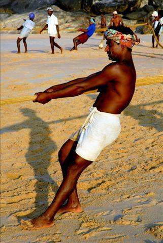 tn_480_india6.jpg.jpg