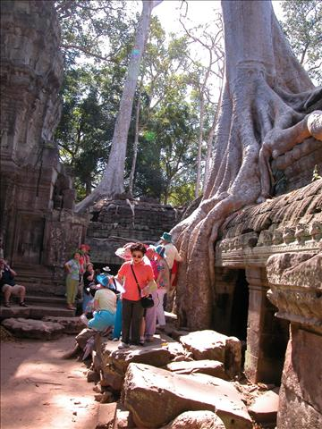 tn_480_cambodia19.jpg.jpg