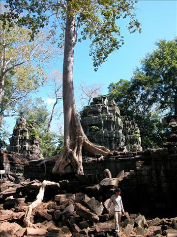 tn_480_cambodia24.jpg.jpg