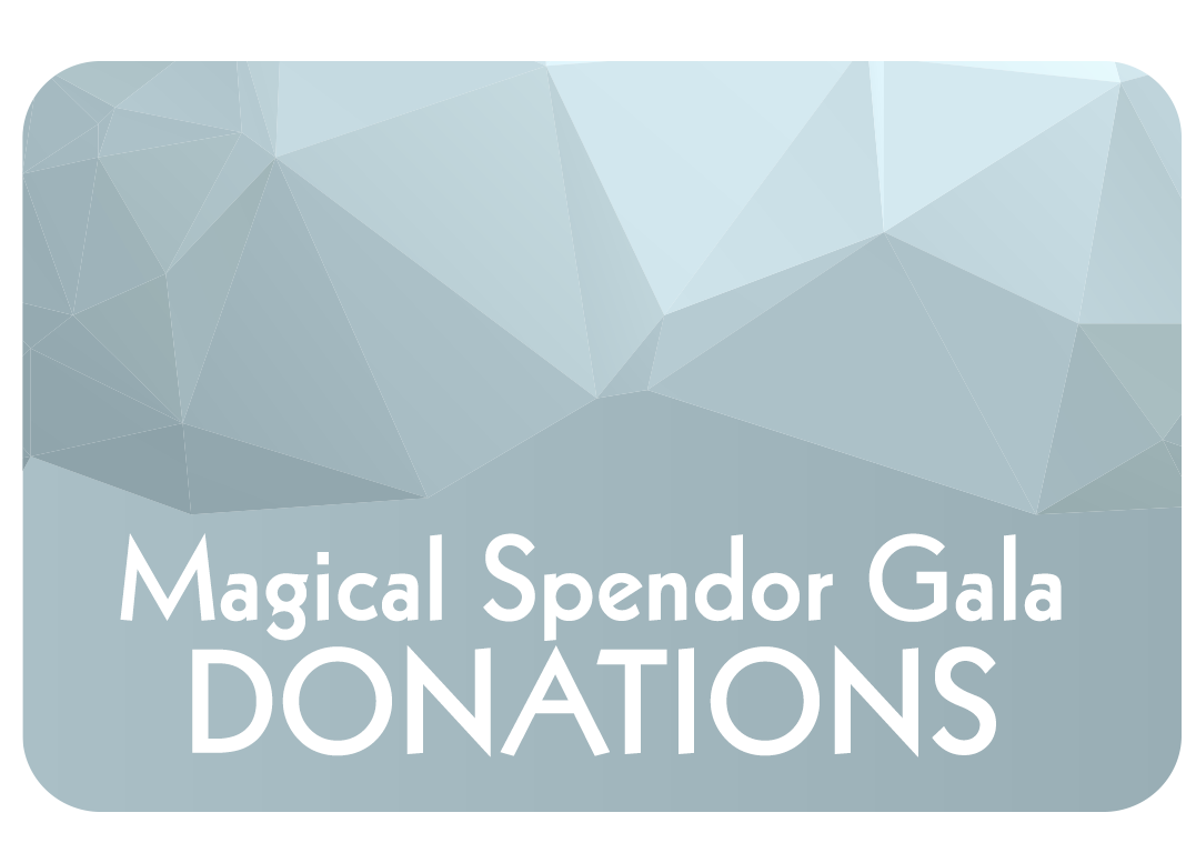 MIR_donations.png