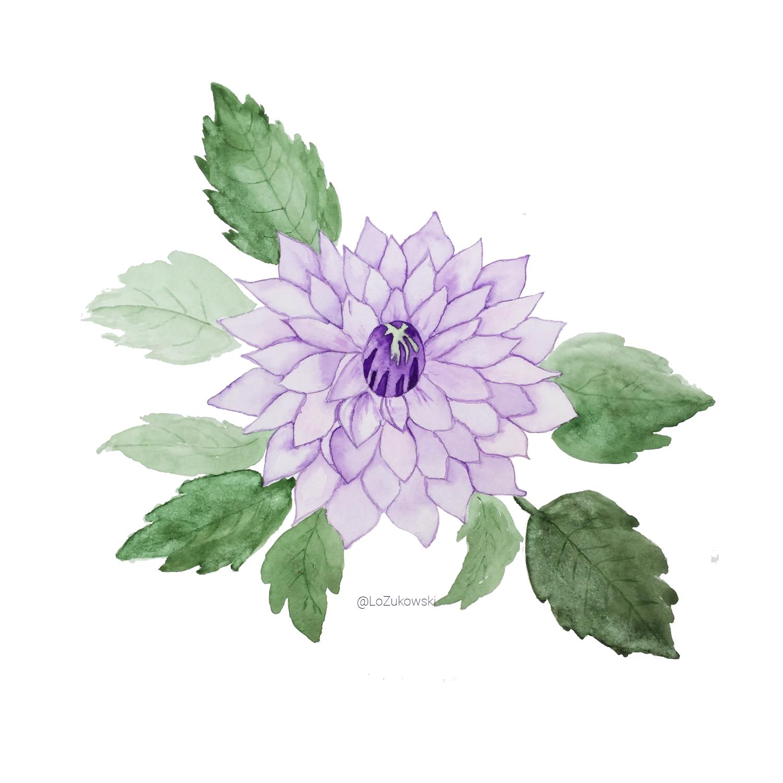 Purple Dahlia.png