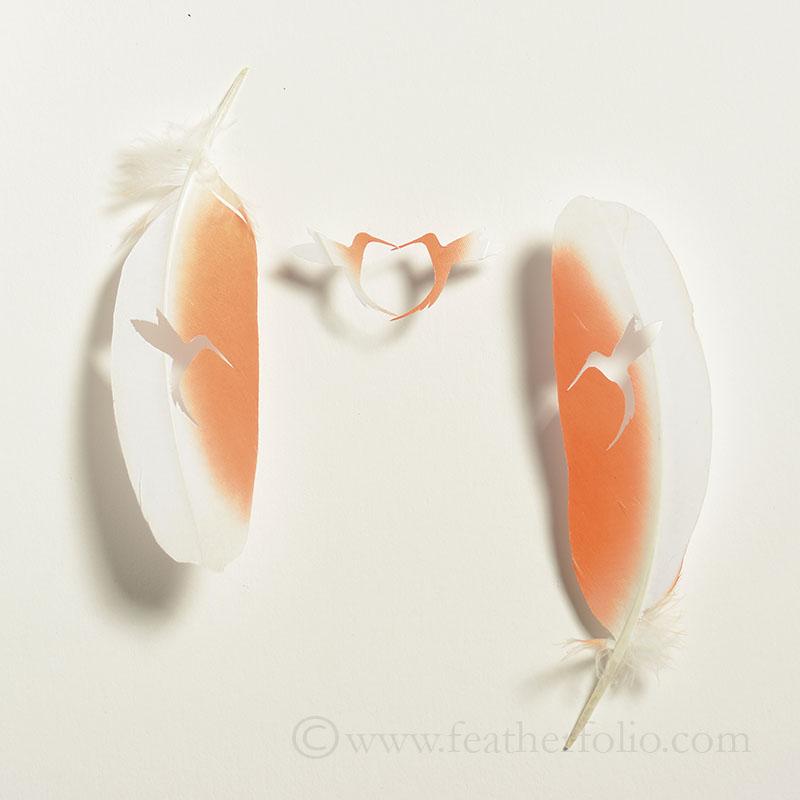 Cockatoo heart.