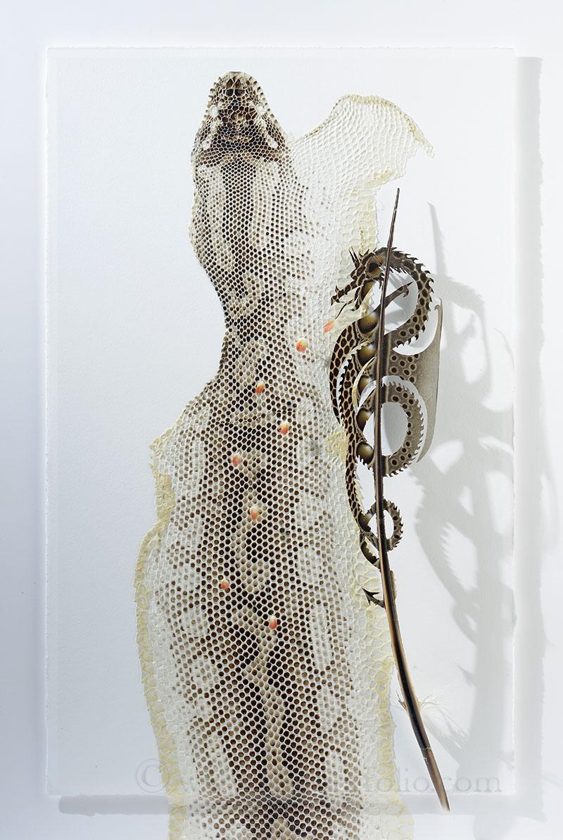 Dragon Snake.