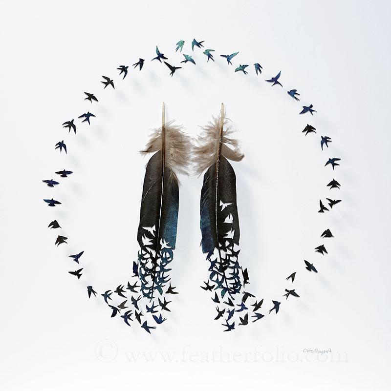 Rachels-Swallow-Circle-WEBwm.jpg