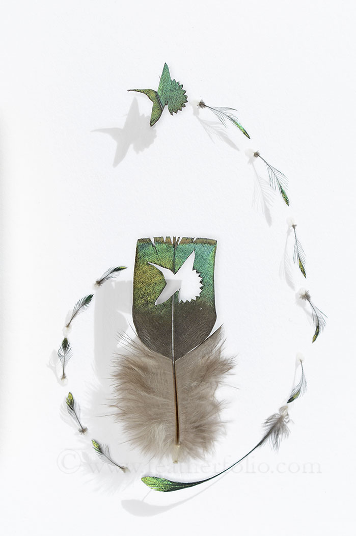 Hummer Summer . 6 by 4 inches . ocellated turkey feathers and small impeyan pheasant feathers