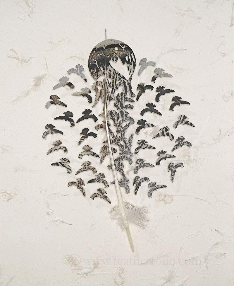 "Raven Rounds . turkey feather . 21"" x 15"" . 2018"