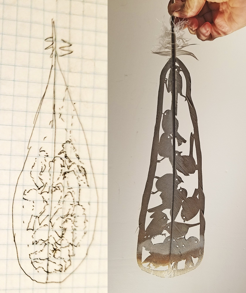 Thought notes and result,  Bushtit Nest Feather