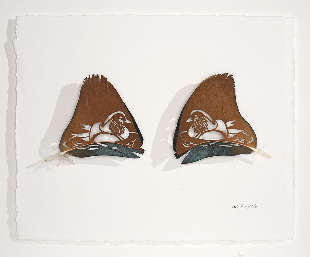 Mandarin Sail Feathers