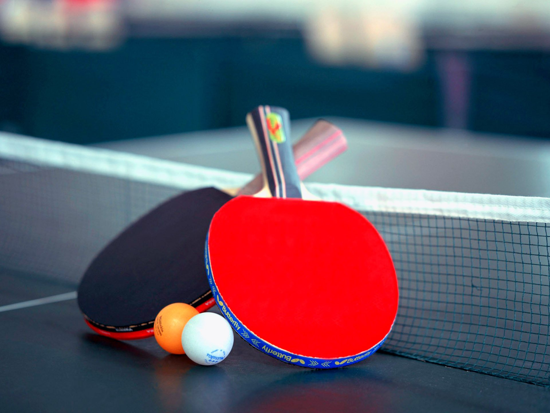 Image result for table tennis images free