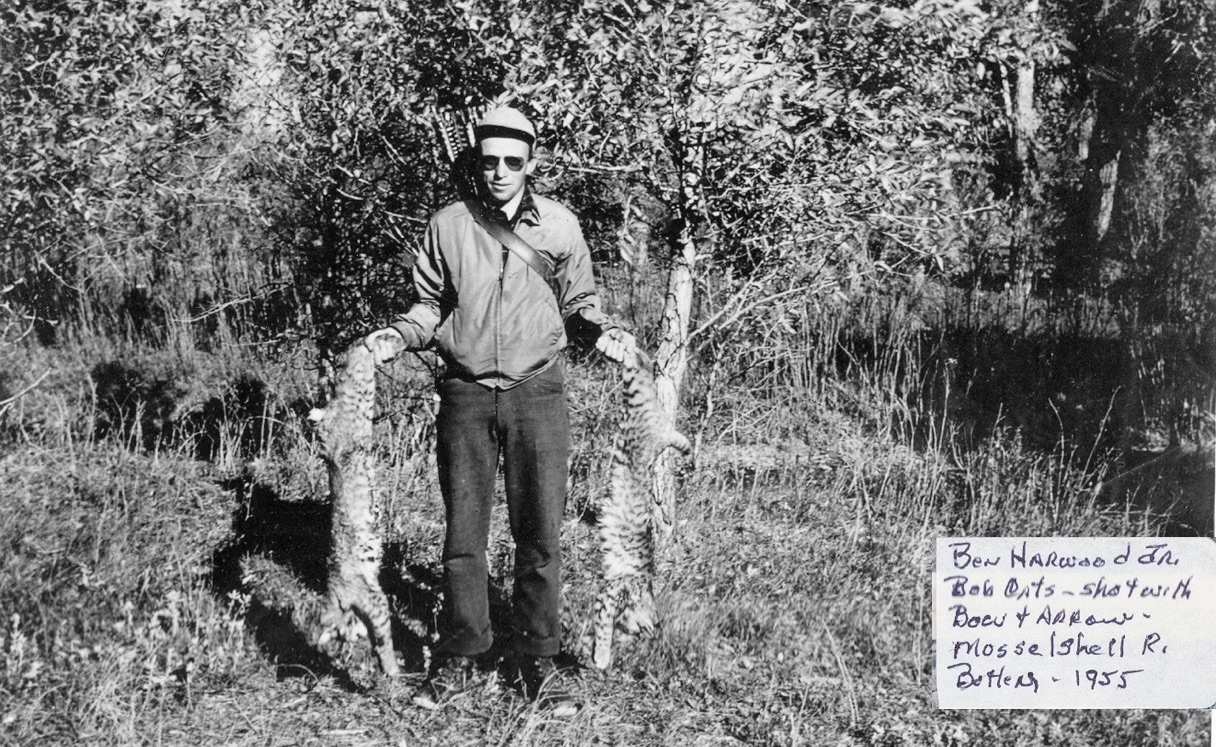 MY GRANDFATHER WITH TWO BOBCATS HE HUNTED WITH A BOW AND ARROW