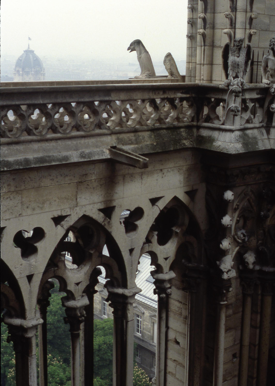 Notre Dame, Paris, detail
