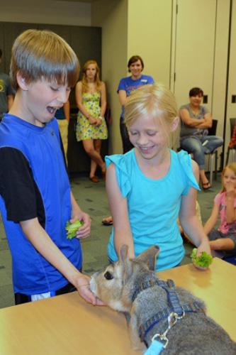 wildlife-encounters-library-programs.jpg