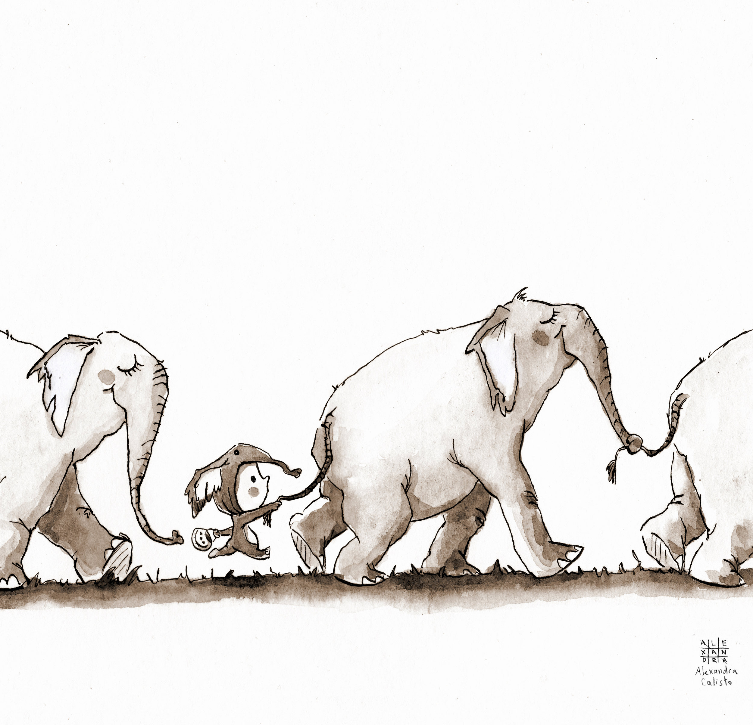 illustration, ink, tinta china, alexandra calisto, elephants