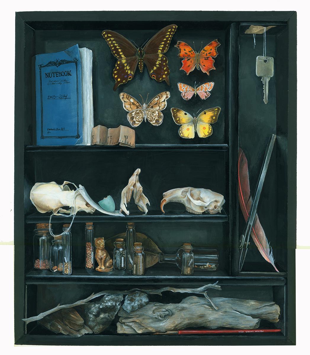 Cabinet of Curiosities, 2014